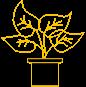 Pflanze bis 0,50 m (nur Umzug)